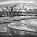 Surf At Driftwood Beach by Debra and Dave Vanderlaan