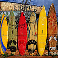 Surf Board Fence Maui Hawaii by Edward Fielding