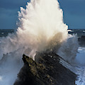 Surf Erupts On The Rocks At Shore Acres by Robert L. Potts