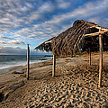 Surf Shack II by Peter Tellone