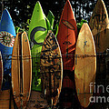 Surfboard Fence 4 by Bob Christopher