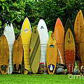 Surfboard Fence Maui by Bob Christopher