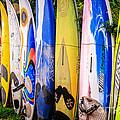 Surfboard Fence Maui Hawaii by Edward Fielding
