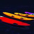 Surfboards by Visual Artist Frank Bonilla
