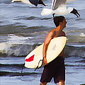 Surfer And The Birds by Alice Gipson