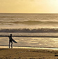 Surfer At Sunset  by AJ  Schibig