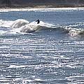 Surfer by Daniel Jakus