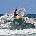 Surfing In Hawaii by Venetia Featherstone-Witty