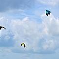 Surfing Kites by Tara Potts