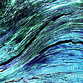 Surfing by Wendy Wilton