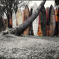 Surfs Up by Linda Dunn