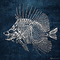 Surgeonfish Skeleton In Silver On Blue  by Serge Averbukh