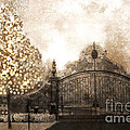 Surreal Fantasy Haunting Gate With Sparkling Tree by Kathy Fornal