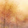 Surreal Grass by Jolanta Zychlinska