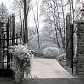 Surreal Haunting Infrared Nature Gate Scene by Kathy Fornal