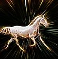 Surreal Horse by Steve McKinzie