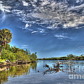 Surreal Intracoastal View by Michelle Constantine