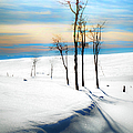 Surreal Snowscape by Theresa Tahara