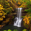Surrounded By Fall by Darren  White