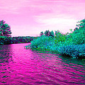Surrreal Pink Waters by Joseph Wiegand