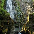Susan Creek Falls Series 3 by Teri Schuster