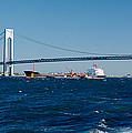 Suspension Bridge Over A Bay by Panoramic Images