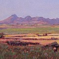 Sutter Buttes In Summer Afternoon by Takayuki Harada