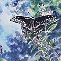 Swallowtail Butterfly by Jan Bennicoff