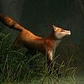 Swamp Fox Detail by Daniel Eskridge