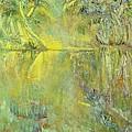 Swamp Sun by Faith Coddington