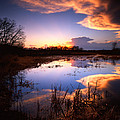 Swamp Sunset II by Ray Mathis