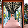 Swan And Dolphin Resort Walt Disney World 3 Panel Composite by Thomas Woolworth