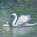 Swan And One Baby by Linda Mears