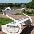 Swan Bench by Christiane Schulze Art And Photography
