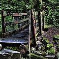 Swan Creek Footbridge by David Patterson