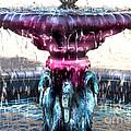 Swan Fountain by Bonnie Sprung