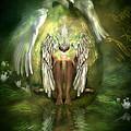 Swan Goddess by Carol Cavalaris
