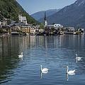 Swan Lake by Wade Aiken