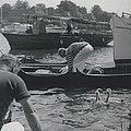 Swan Upping Picturesque Ceremony That Has Not Changed For by Retro Images Archive