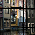 Swans Love Amsterdam by Joan Carroll