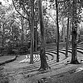 Swarthmore College Scott Amphitheater by University Icons