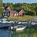 Swedish Summer by Nancy De Flon