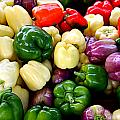 Sweet Bell Peppers by Tina Meador