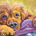 Sweet Boy Rescued by Susan A Becker