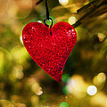 Sweet Christmas by Duy Dang