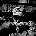 Sweet Corn 2.00 by Frank J Casella