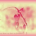 Sweet Heart by Kathy Sampson