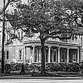 Sweet Home New Orleans Bw by Steve Harrington