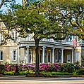 Sweet Home New Orleans by Steve Harrington