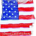 Sweet Land Of Liberty by Robert ONeil